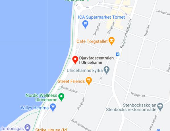 Kartbild till Djurvårdscentralen i Ulricehamn